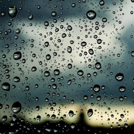 Lluvia Nº 1