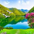 Sonidos de Naturaleza